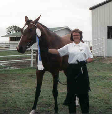 Champion Mare/Trail Horse  Graefin/To High Adventure Horses/www.highadventure1.com/horse.htm